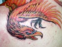 TATUAJE AVE FENIX COLOR  OMOPLARO
